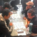 Toronto Chinatown/Vietnamese versus Whitby/Owen Sound