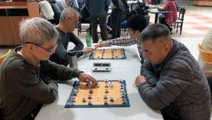 Undercover Xiangqi in Toronto